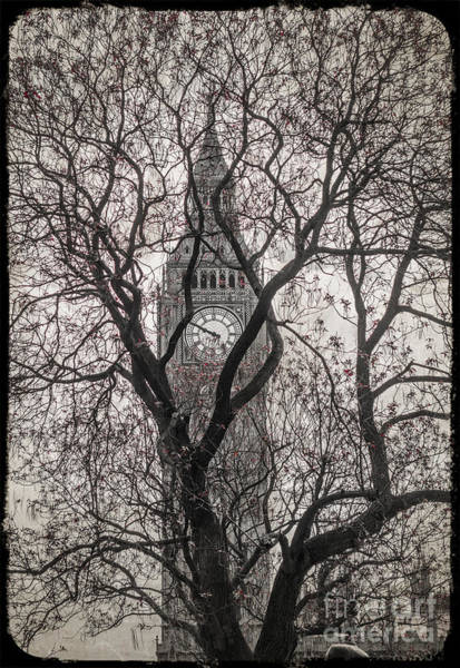 Wall Art - Photograph - Big Ben From The Square by Stacey Granger