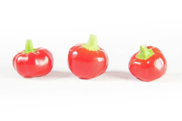 Photograph - Big Bomb Red Chillies by Helen Northcott