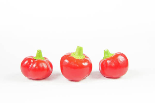 Photograph - Big Bomb Red Chillies V by Helen Northcott