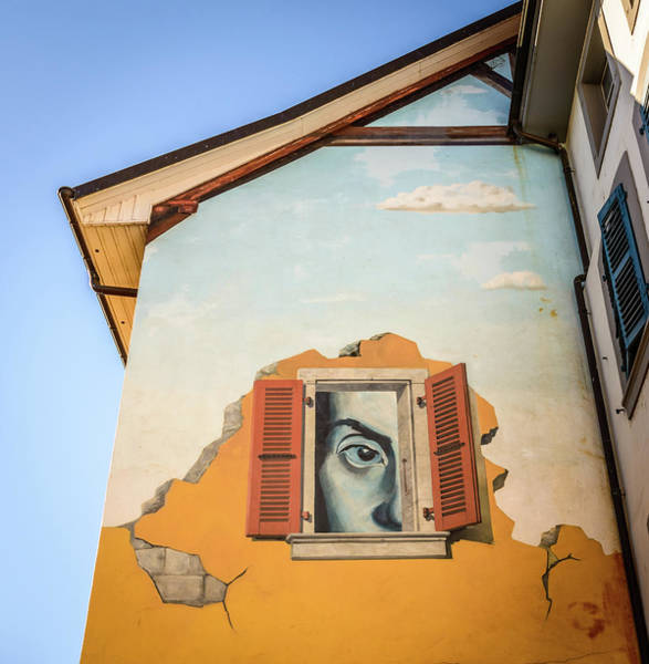 Photograph - Big Brother Is Watching... by Alexandre Rotenberg