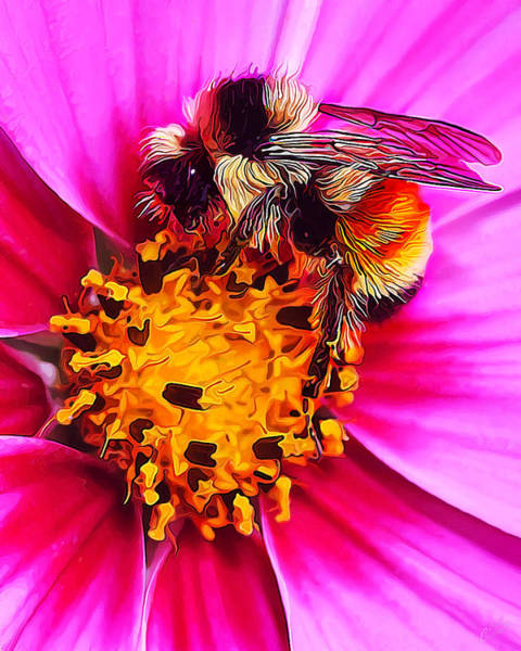 Manipulated Digital Art - Big Bumble On Pink by ABeautifulSky Photography by Bill Caldwell