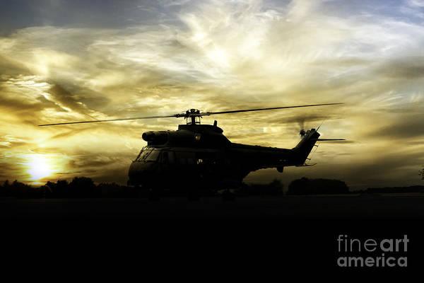 Puma Digital Art - Big Cat Sunrise by J Biggadike