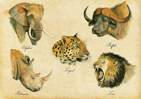 Wall Art - Painting - Big Five Poster by Juan  Bosco