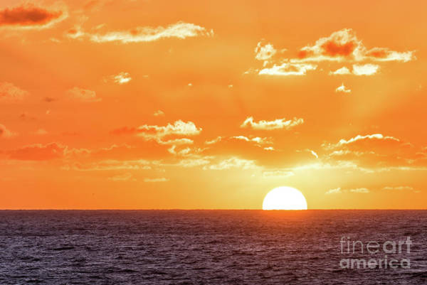 Photograph - Big Golden Sunset At Swami's Beach by David Levin