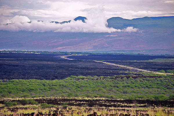 Photograph - Big Island Landscape 2 by Bette Phelan