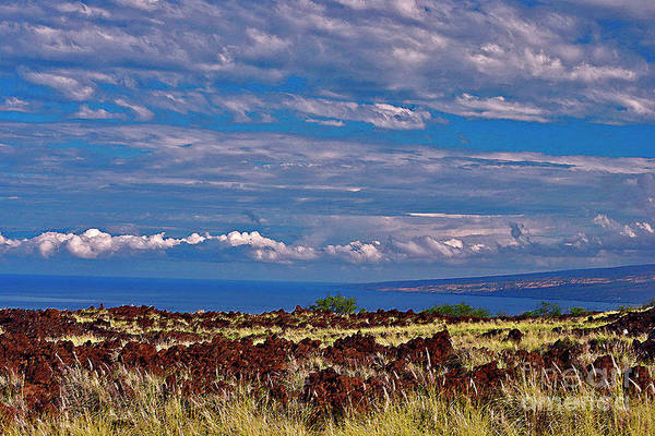 Photograph - Big Island Landscape 4 by Bette Phelan