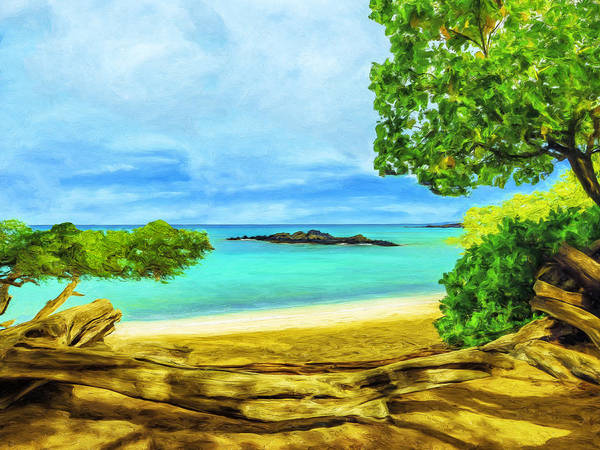 Painting - Big Island Solitude by Dominic Piperata