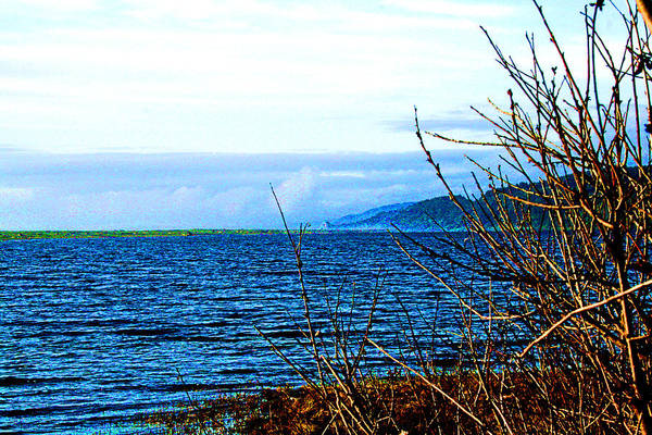 Photograph - Big Lagoon - Humboldt County by Joseph Coulombe