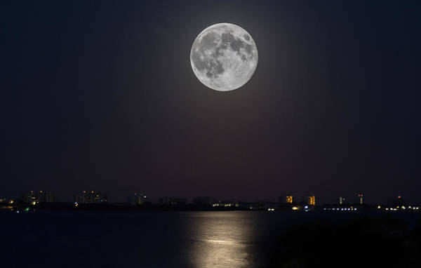 Photograph - Big Moon Over The Bay by Richard Goldman