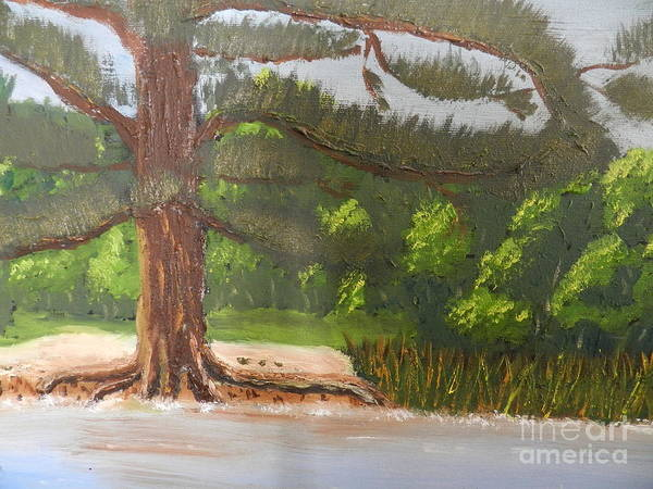 Wall Art - Painting - Big Old Pine Tree by Pamela Meredith