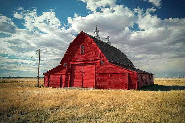 Photograph - Big Red by Todd Klassy