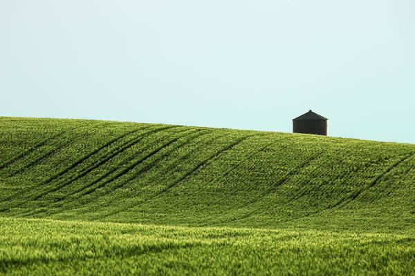 Photograph - Big Sag Wheat by Todd Klassy
