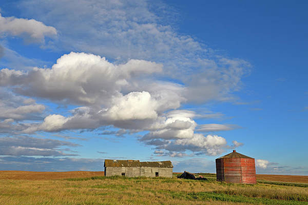 Photograph - Big Skies by Tony Beck