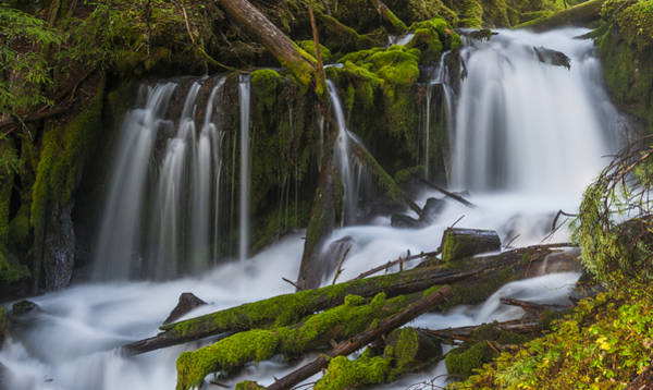 Photograph - Big Spring Creek Falls - Lower by Loree Johnson