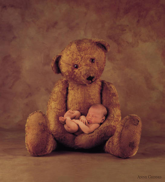 Nursery Photograph - Big Ted by Anne Geddes