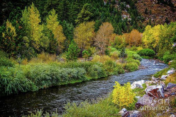 Photograph - Big Thompson River Bend by Jon Burch Photography