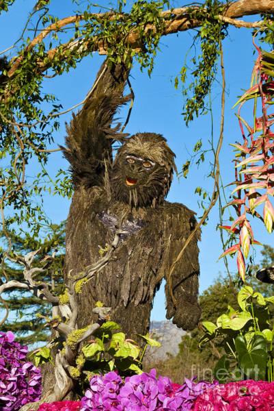 Tournament Of Roses Photograph - Bigfoot  by David Zanzinger