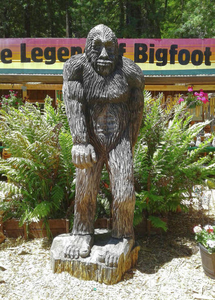 Photograph - Bigfoot by Gregory Dyer