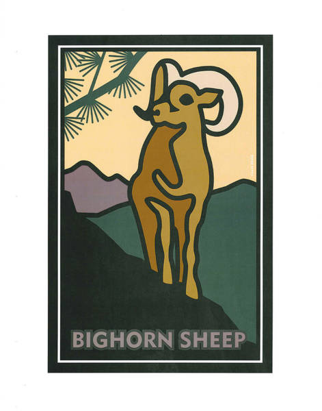 Painting - Bighorn Sheep by Carrie MaKenna