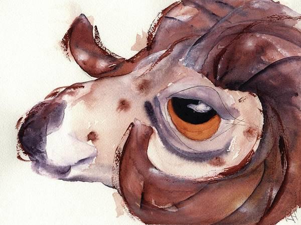 Painting - Bighorn Sheep by Dawn Derman