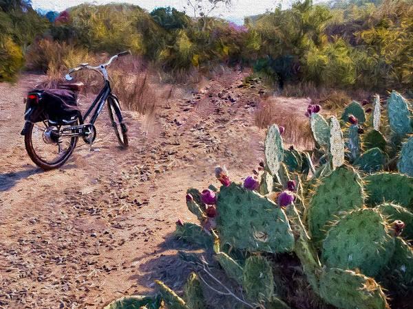 Mission Viejo Photograph - Bike And Cactus by Vivian Frerichs