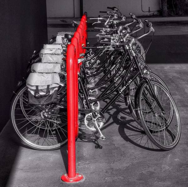 Photograph - Bikes by Gia Marie Houck