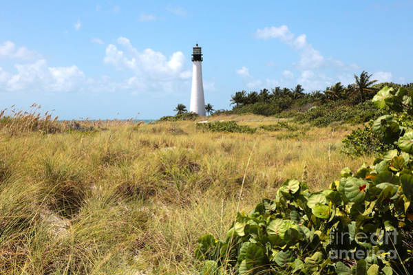 Photograph - Bill Baggs Lighthouse With Dunes by Carol Groenen