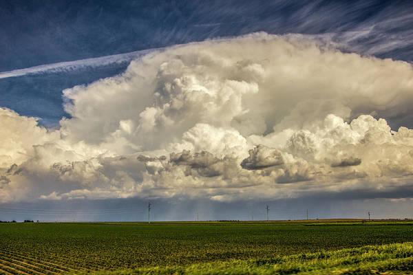 Photograph - Billowing Beauty 007 by NebraskaSC