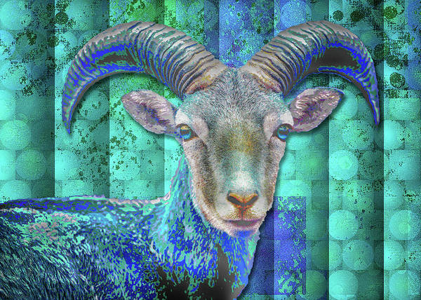 Digital Art - Billy Goat Blue by Mimulux patricia No