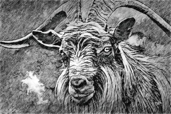 Digital Art - Billy Goat Sketch by Artful Oasis