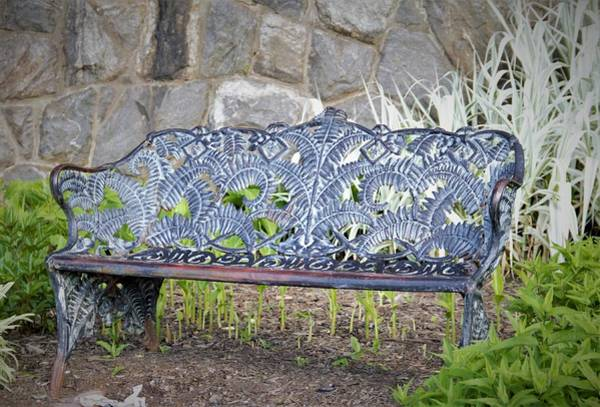Photograph - Biltmore Bench by Allen Nice-Webb