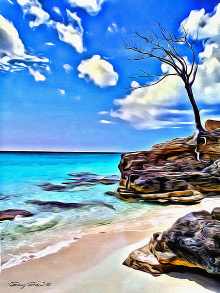 Bahamas Digital Art - Bimini by Anthony C Chen