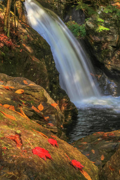 Wall Art - Photograph - Bingham Falls by Dan Sproul