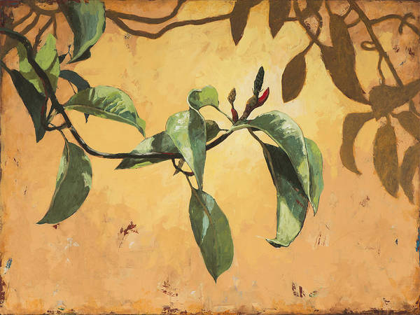 Wall Art - Painting - Biosphere #2 by David Palmer