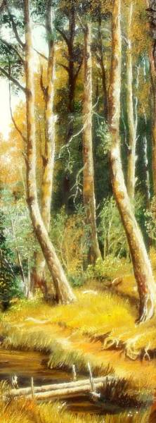 Painting - Birch Forest by Sorin Apostolescu