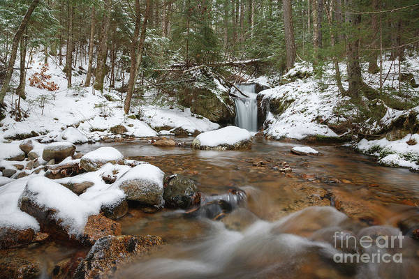 Photograph - Birch Island Brook - White Mountains, New Hampshire  by Erin Paul Donovan