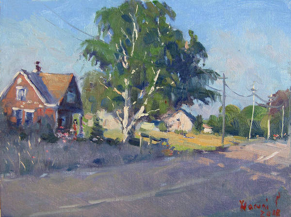 Birches Painting - Birch Tree At Lockport Rd by Ylli Haruni
