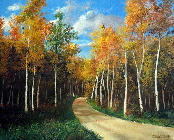 Painting - Birch Trees Along The Country Road by Christopher Shellhammer