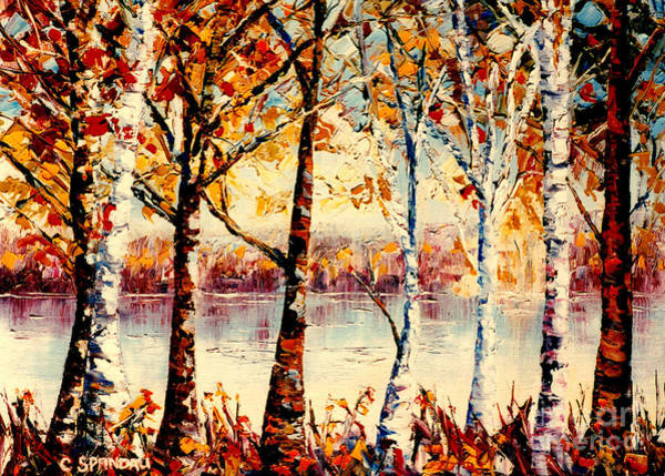 Painting - Birch Trees At Lake Canadian Landscape Painting C Spandau Country Scene Quebec Artist Canadian Art   by Carole Spandau