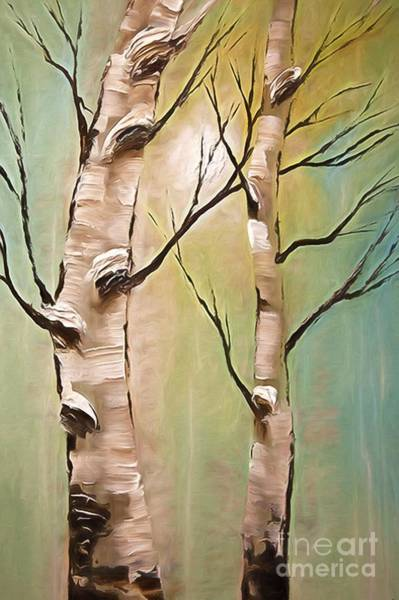 Wall Art - Photograph - Birch Trees Color Pencil  by Heinz G Mielke