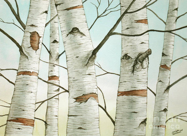 Painting - Birch Trees In Late Autumn In Watercolor by Christopher Shellhammer