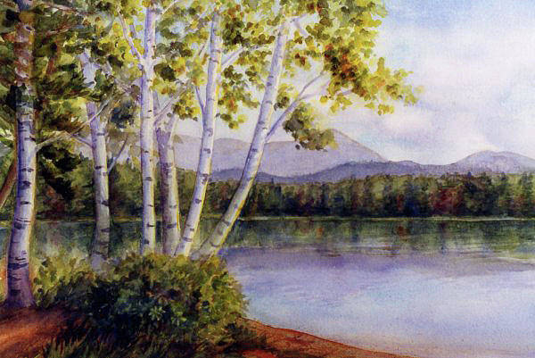 Painting - Birches At White Lake by Janet Zeh