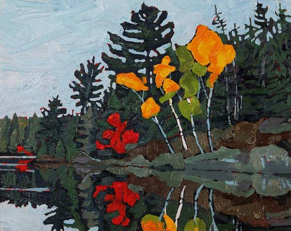 Canoeist Wall Art - Painting - Birches Canoe Lake by Phil Chadwick