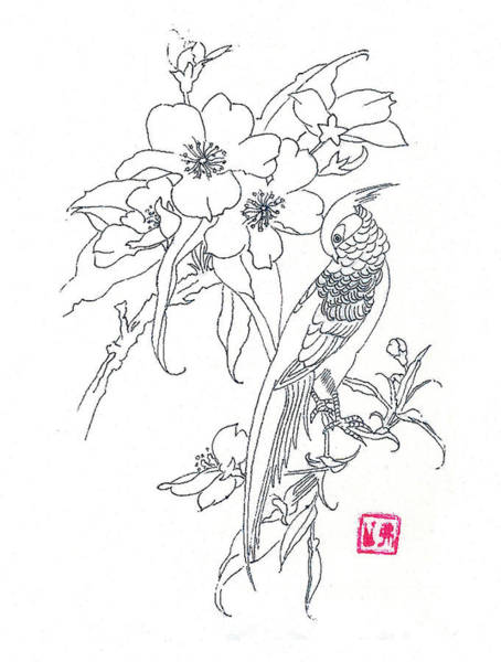 Wall Art - Drawing - Bird And Flowers by Michael Vigliotti