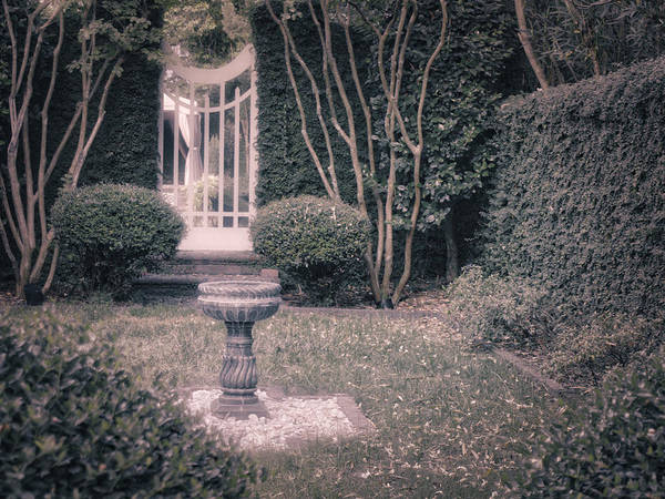 Photograph - Bird Bath by Michael Colgate