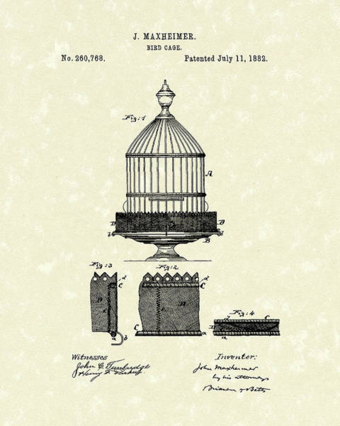 Avian Drawing - Bird Cage 1882 Patent Art by Prior Art Design