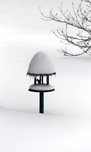 Bird Feeder In Snow Art Print