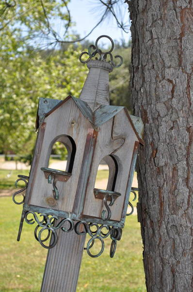 Photograph - Bird House by Bridgette Gomes