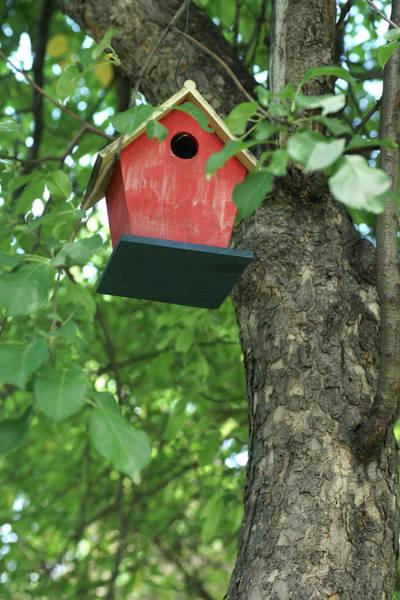 Empty Nest Wall Art - Photograph - Bird Houses by Donald Erickson