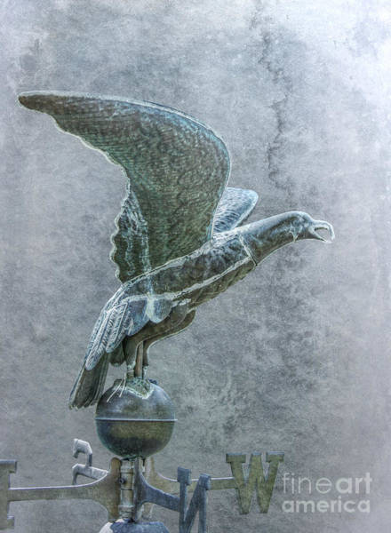 Bird In Flight Digital Art - Bird In Flight Weathervane by Randy Steele